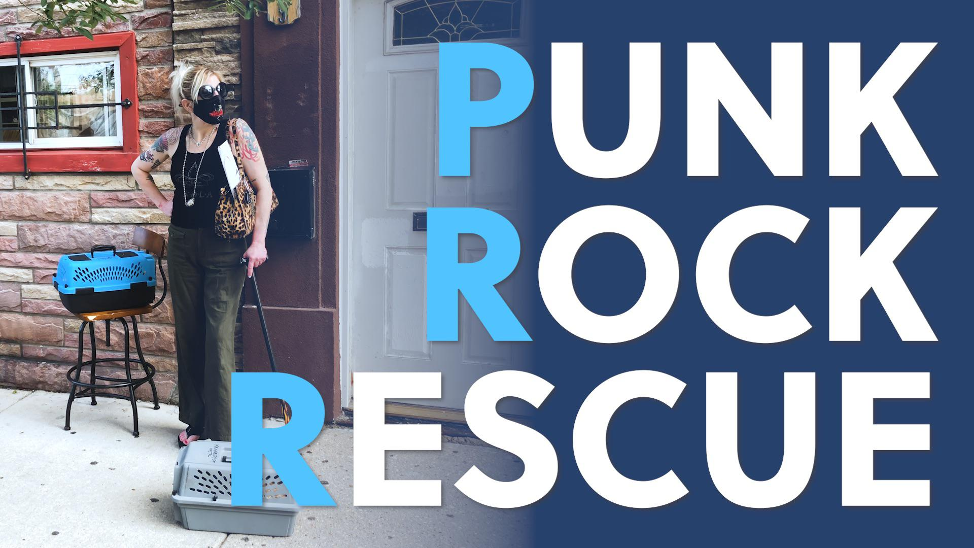 Punk Rock Rescue | The Innkeepers of Kennedy Cat Hostel